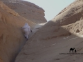 Climbing Mutamir_result