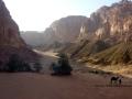 Hidden oasis, Farsh Fureh, Sinai, Go tell it on the mountain