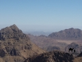 Mount Sinai & Umm Alawi, Go tell it on the mountain_result