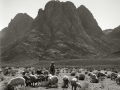 El Raha, Sinai, Go tell it on the mountain