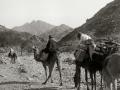 Hebran, Sinai, Go tell it on the mountain