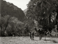 Wadi Feiran, oasis, Go tell it on the mountain