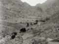 Wadi Tlah, Sinai, Go tell it on the mountain