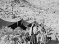 Women, Bedouin, Go tell it on the mountain