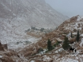 A snowy winter; Garden of Megafa, Go tell it on the mountain_result
