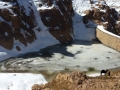Frozen dam, Sinai, Go tell it on the mountain