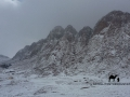 Jebel Safsafa in the snow, Go tell it on the mountain_result