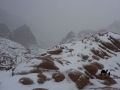 Sinai in the snow, Go tell it on the mountain_result