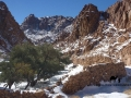 Wadi Tubug, Sinai, Go tell it on the mountain_result