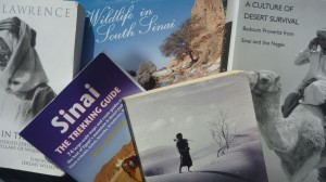 Sinai book compilation, Go tell it on the mountain