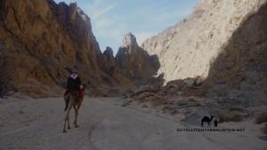 Melha Canyon, Sinai, Go tell it on the mountain
