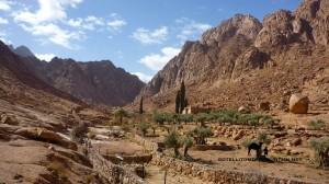 Wadi Talla, Sinai, Go tell it on the mountain_result
