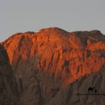 Jebel el Ahmar, Sinai, Go tel it on the mountain