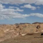 Wadi Hudera, Sinai, Go tell it on the mountain_result