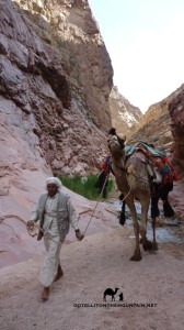 Wadi Isleh, Go tell it on the mountain_result