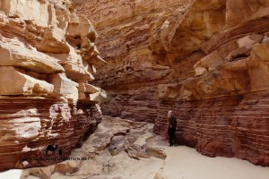 Abu Hamata Canyon, Sinai, Go tell it on the mountain, Leo Laimer
