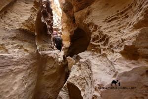 Abu Hamata Canyon Sinai, narrow section. Leo Laimer, Go tell it on the mountain