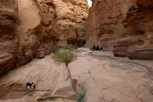 Abu Hamata Canyon, South Sinai, Leo Laimer, Go tell it on the mountain
