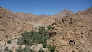 Ein Kidd, Sinai, Ben Hoffler Go tell it on the mountain_result_result