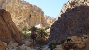 Ein el Guseib, Sinai, Go tell it on the mountain, Ben Hoffler